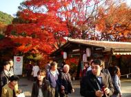 Asisbiz Otowa san Kiyomizu dera garden walkways Kyoto Nov 2009 23