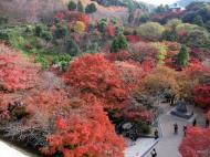 Asisbiz Otowa san Kiyomizu dera garden walkways Kyoto Nov 2009 28