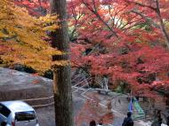 Asisbiz Otowa san Kiyomizu dera garden walkways Kyoto Nov 2009 29