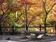 Asisbiz Otowa san Kiyomizu dera garden walkways Kyoto Nov 2009 45