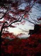 Asisbiz Otowa san Kiyomizu dera main hall Kyoto Nov 2009 02