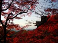 Asisbiz Otowa san Kiyomizu dera main hall Kyoto Nov 2009 03