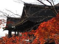 Asisbiz Otowa san Kiyomizu dera main hall Kyoto Nov 2009 08