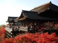 Asisbiz Otowa san Kiyomizu dera main hall Kyoto Nov 2009 11
