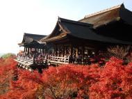 Asisbiz Otowa san Kiyomizu dera main hall Kyoto Nov 2009 12