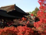 Asisbiz Otowa san Kiyomizu dera main hall Kyoto Nov 2009 16