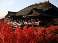 Asisbiz Otowa san Kiyomizu dera main hall Kyoto Nov 2009 18