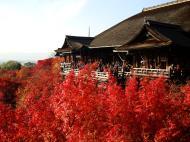 Asisbiz Otowa san Kiyomizu dera main hall Kyoto Nov 2009 20