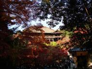 Asisbiz Otowa san Kiyomizu dera main hall Kyoto Nov 2009 36