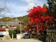 Asisbiz Otowa san Kiyomizu dera main hall shrine room Nov 2009 26