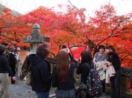 Asisbiz Otowa san Kiyomizu dera main hall shrine room Nov 2009 31
