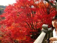 Asisbiz Otowa san Kiyomizu dera main hall shrine room Nov 2009 32