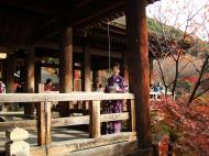 Asisbiz Otowa san Kiyomizu dera main hall shrine room Nov 2009 37