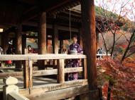 Asisbiz Otowa san Kiyomizu dera main hall shrine room Nov 2009 38