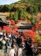 Asisbiz Otowa san Kiyomizu dera main hall shrine room Nov 2009 48