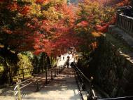 Asisbiz Otowa san Kiyomizu dera main hall shrine room Nov 2009 51