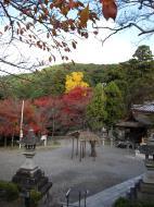 Asisbiz Otowa san Kiyomizu dera main hall shrine room Nov 2009 54