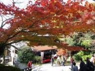 Asisbiz Otowa san Kiyomizu dera street entrance Kyoto Nov 2009 12