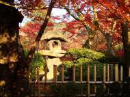 Asisbiz Otowa san Kiyomizu dera temple gardens Kyoto Nov 2009 06