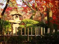 Asisbiz Otowa san Kiyomizu dera temple gardens Kyoto Nov 2009 10