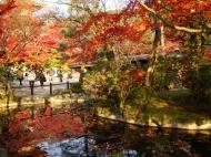 Asisbiz Otowa san Kiyomizu dera temple gardens Kyoto Nov 2009 12