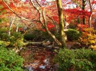Asisbiz Otowa san Kiyomizu dera temple gardens Kyoto Nov 2009 13