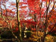Asisbiz Otowa san Kiyomizu dera temple gardens Kyoto Nov 2009 15