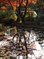 Asisbiz Otowa san Kiyomizu dera temple gardens Kyoto Nov 2009 19
