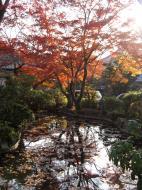 Asisbiz Otowa san Kiyomizu dera temple gardens Kyoto Nov 2009 21