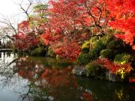 Asisbiz Otowa san Kiyomizu dera temple gardens Kyoto Nov 2009 24