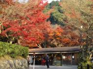 Asisbiz Otowa san Kiyomizu dera temple gardens Kyoto Nov 2009 27