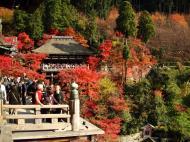 Asisbiz Otowa san Kiyomizu dera wooden terrace Kyoto Nov 2009 01