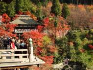 Asisbiz Otowa san Kiyomizu dera wooden terrace Kyoto Nov 2009 02