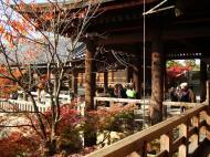 Asisbiz Otowa san Kiyomizu dera wooden terrace Kyoto Nov 2009 04