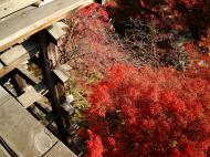 Asisbiz Otowa san Kiyomizu dera wooden terrace Kyoto Nov 2009 05