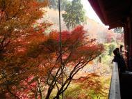 Asisbiz Otowa san Kiyomizu dera wooden terrace Kyoto Nov 2009 08