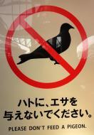 Asisbiz Kyoto Central Train station sign dont feed a pigeon Kansai Japan Mar 2010 01