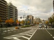 Asisbiz Kyoto City Bus ride to Kinkaku ji Temple and Zen Gardens Japan Nov 2009 06