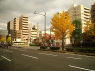 Asisbiz Kyoto City Bus ride to Kinkaku ji Temple and Zen Gardens Japan Nov 2009 09