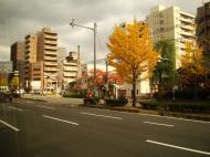 Asisbiz Kyoto City Bus ride to Kinkaku ji Temple and Zen Gardens Japan Nov 2009 10