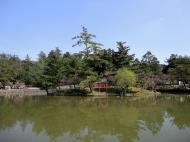Asisbiz Kagami ike pond just past Nandaimon gate Nara sakura season 01