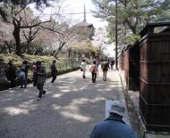 Asisbiz Kofuku ji Temple area walk way artist at work Nara Mar 2010 02