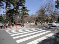 Asisbiz One of the zebra crossings heading towards Kasuga Grand Shrine Nara 01