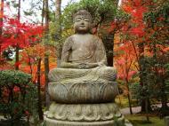 Asisbiz Rokuon ji Temple Gardens main Buddha Kyoto Japan Nov 2009 04