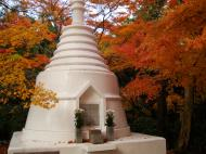Asisbiz Rokuon ji Temple Gardens main pagoda Kyoto Japan Nov 2009 02