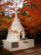 Asisbiz Rokuon ji Temple Gardens main pagoda Kyoto Japan Nov 2009 04
