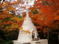 Asisbiz Rokuon ji Temple Gardens main pagoda Kyoto Japan Nov 2009 05