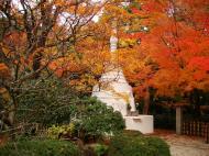 Asisbiz Rokuon ji Temple Gardens main pagoda Kyoto Japan Nov 2009 06