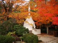 Asisbiz Rokuon ji Temple Gardens main pagoda Kyoto Japan Nov 2009 08