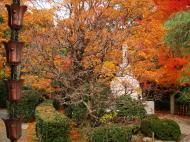 Asisbiz Rokuon ji Temple outdoor zen Gardens Kyoto Japan Nov 2009 03
